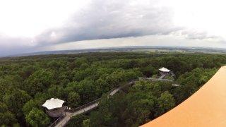 Stezka v korunách stromů v národním parku Hainich